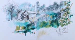 Sept: Paddock Allotments (Marion Wilcox)